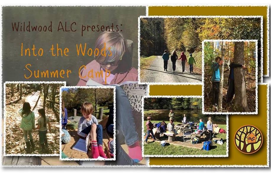 Wildwood+Summer+Camp+Image.jpg