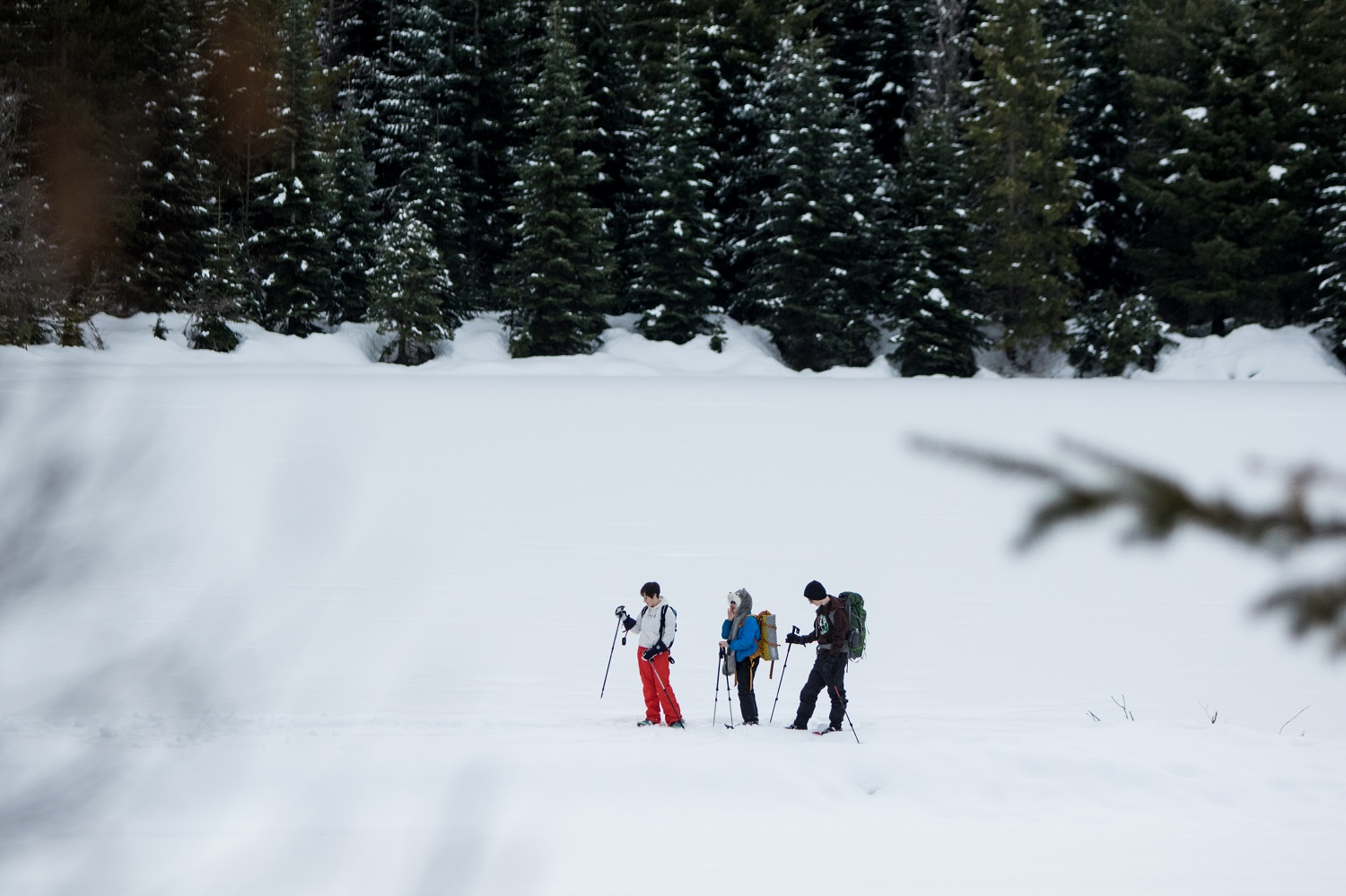 snowshoe-bru-teambuilding-corporate-event.jpg