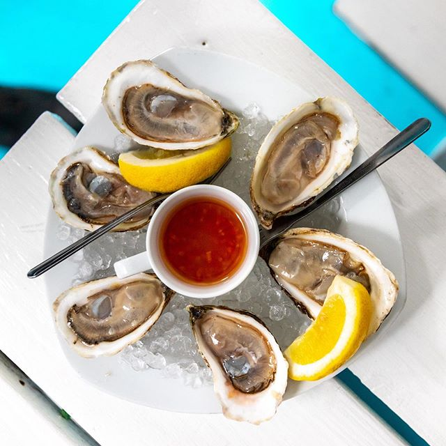 $1 oysters during Happy Hour! 5-8pm Tuesday to Friday! #lazypointnyc