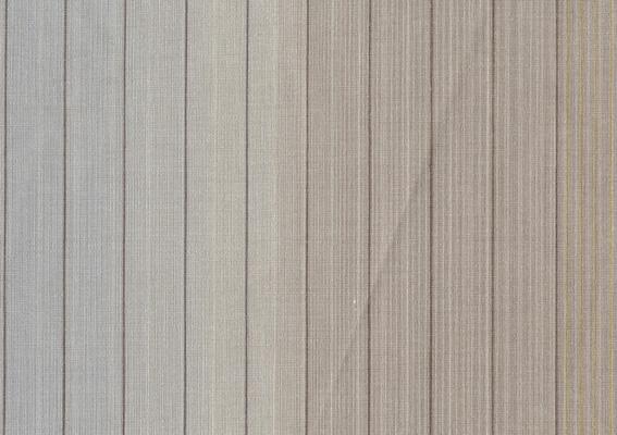 Vertical Stripe 10071