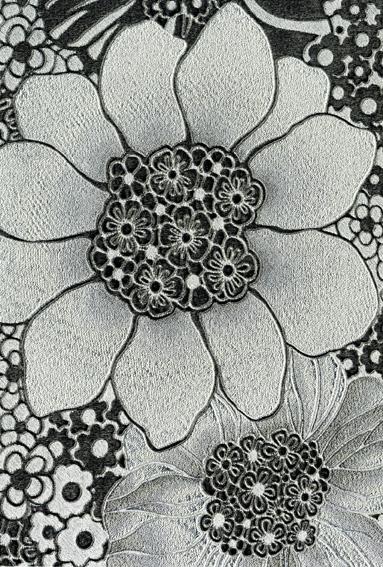 Anemones 20002