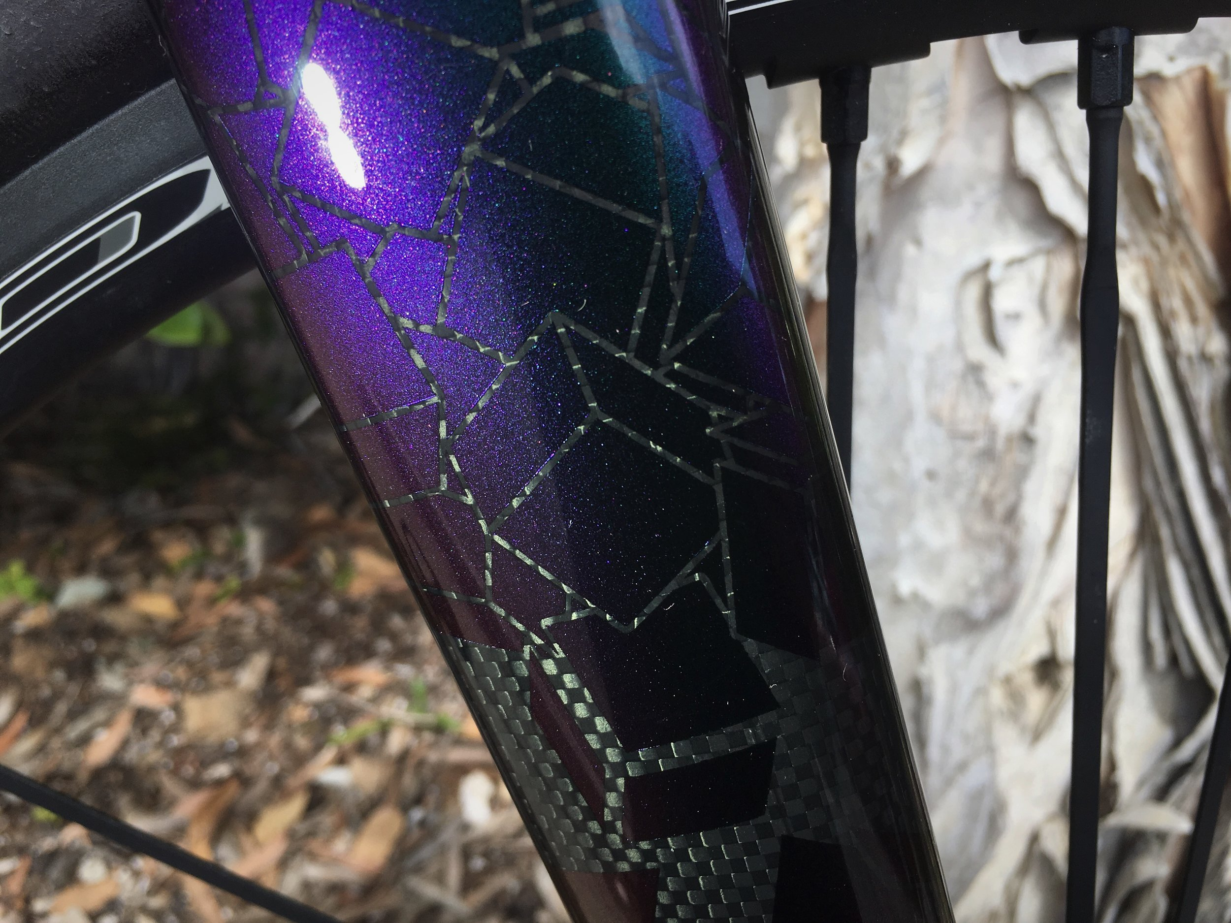 Gaulzetti Pavaix Summer Cycles custom built bicycles 6