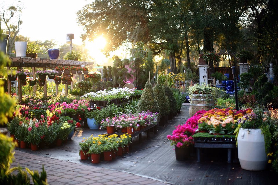 Palmer's Garden & Goods