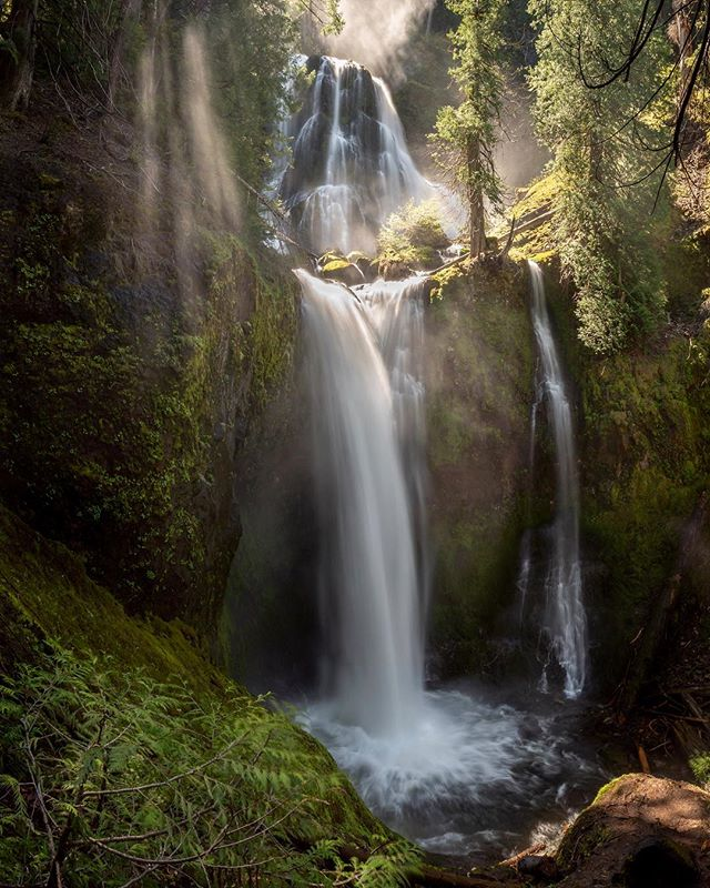 The light rays dancing around with the spray of the falls was absolutely incredible to watch! This is one place I wouldn't mind spending all day at. • • • Tags: #staypnw #pnwwonderland #pnwisbeautiful #pnw #waterfall #waterfallwednesday #water #optoutside #waterfalls #light #lightrays #nature #raysoflight #explore #pnwlove #pnwlife #pnwhiking #pnwcollective #sunrise #folkgreen #northwestisbest #northwest #getoutside