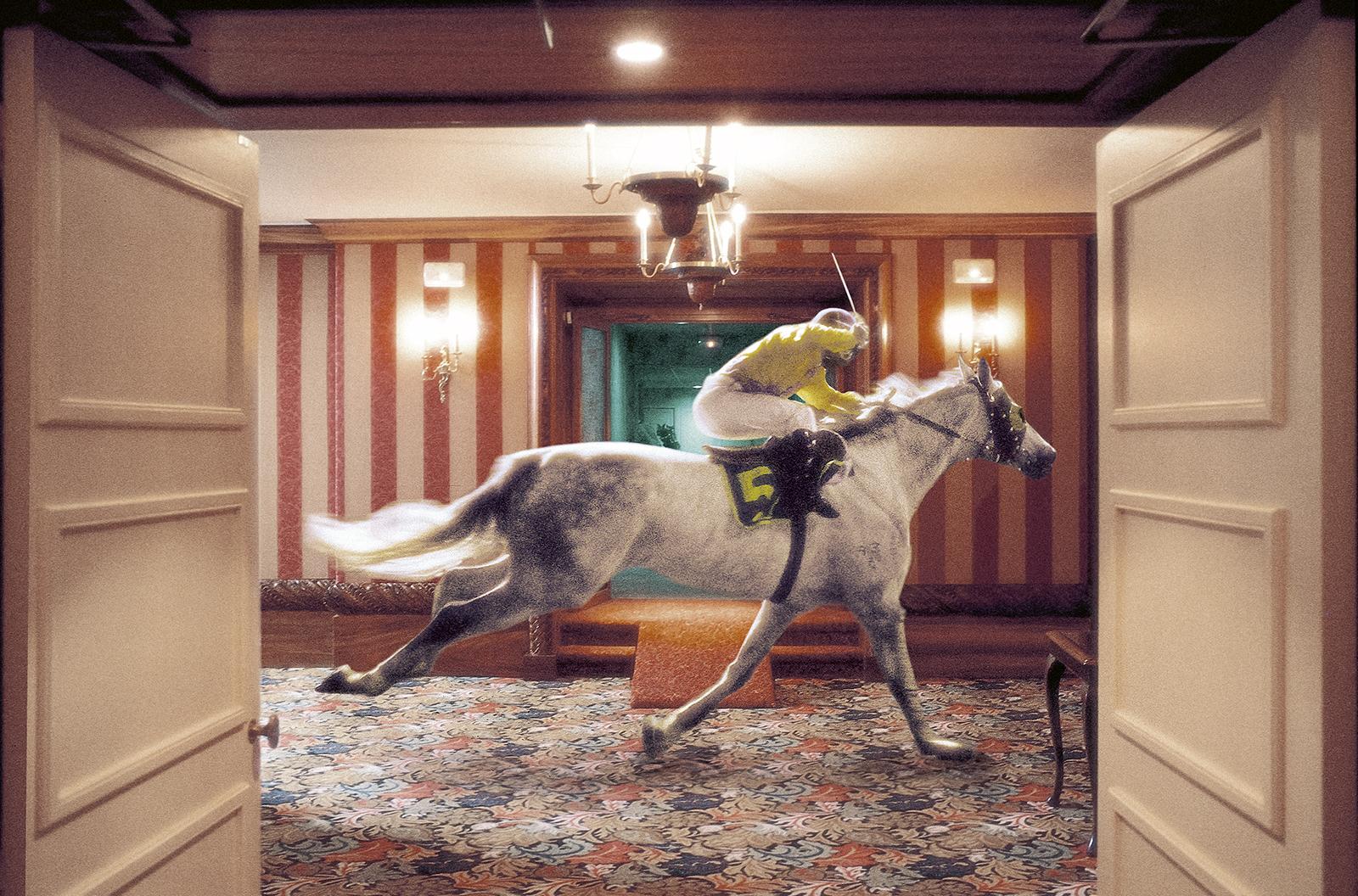 Pferd_neu_ohne_korn.jpg