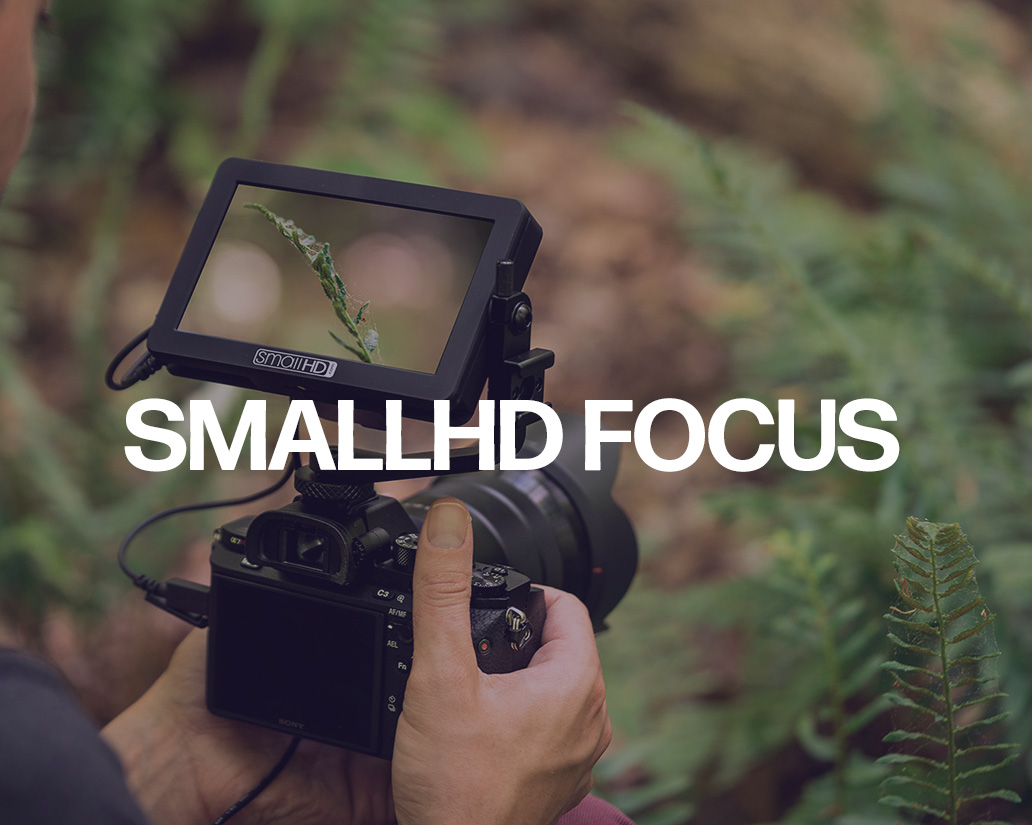 smallhdfocus.jpg