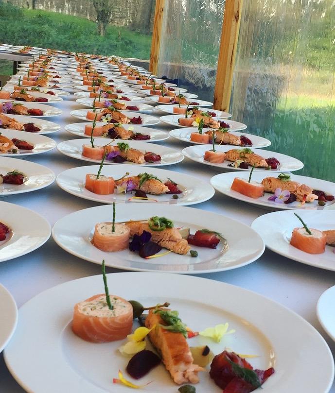 salmon_crop.jpg