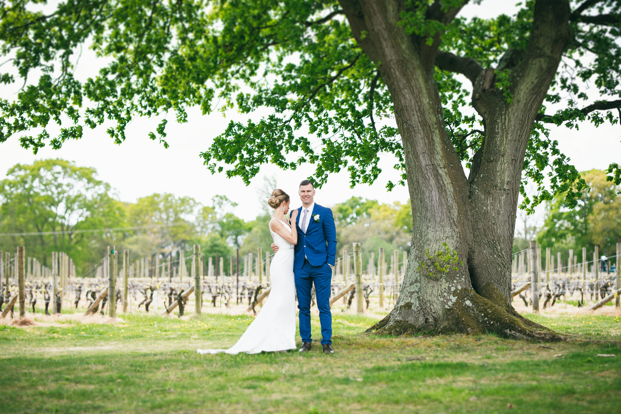 Bride and Groom under the tree near Nyetimber Vineyards Sussex