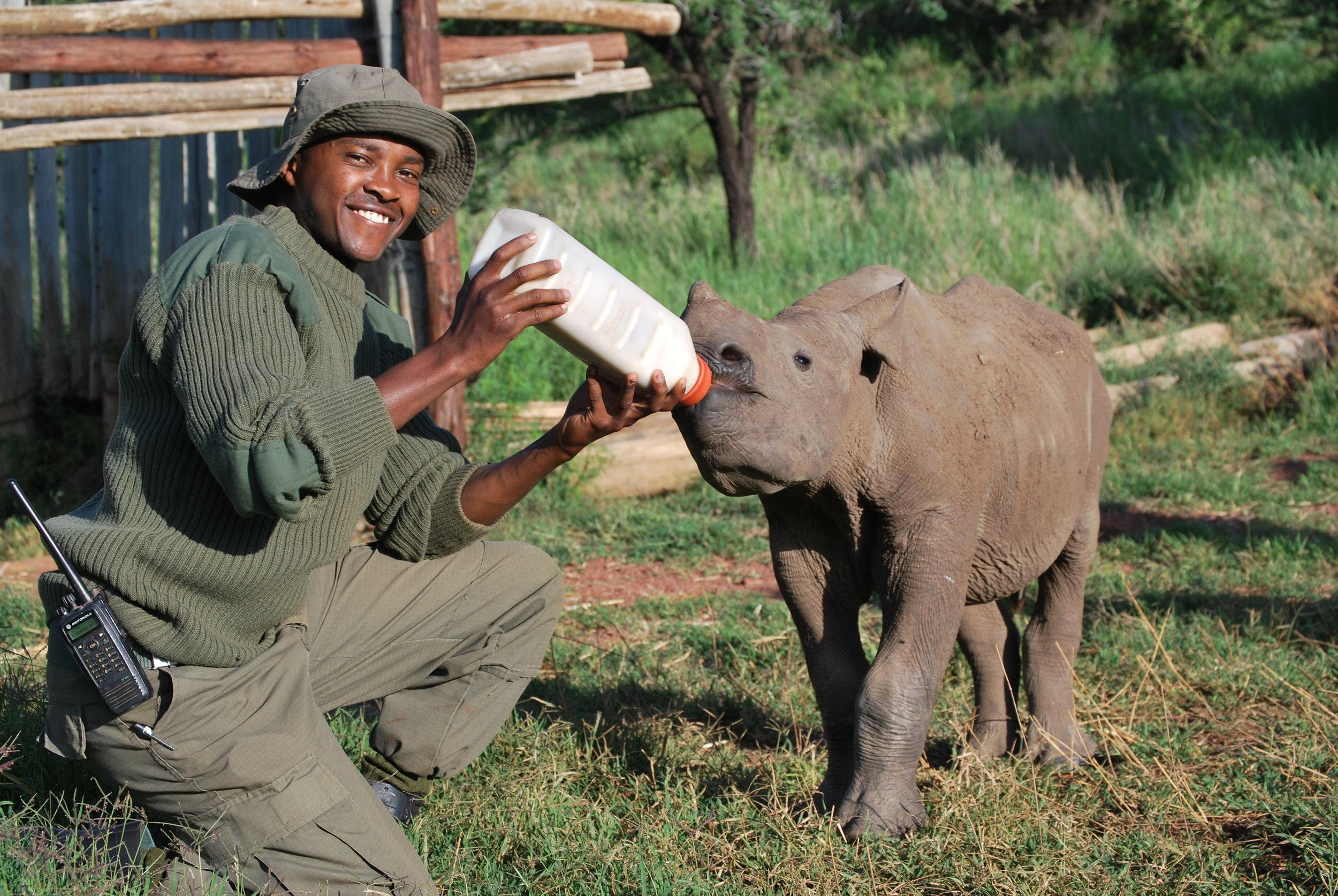 tofauti Osman with baby elephant