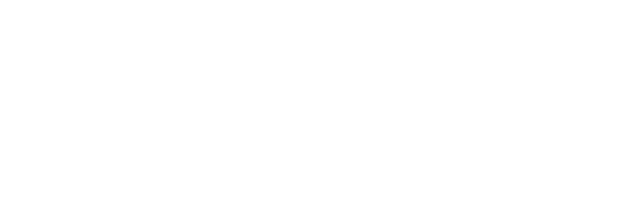 SMARTIVE_marchio_b-n-09.png