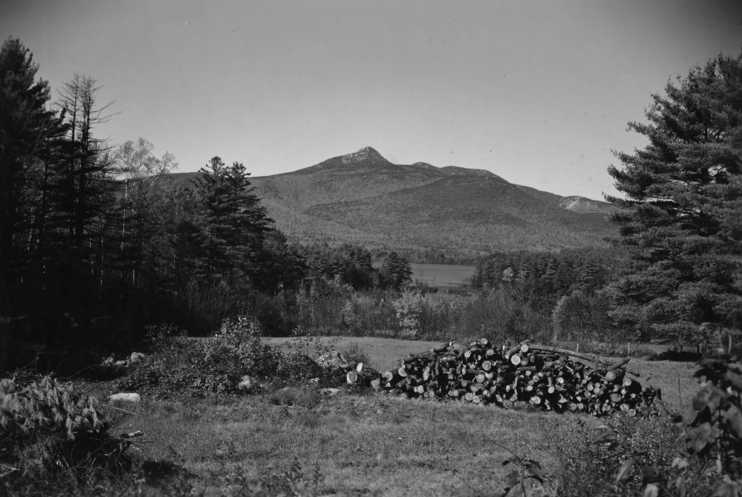 View from Basin View Lot, 1950