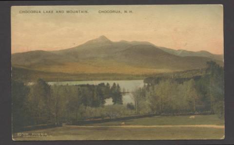 Vintage postcard taken from Basin View Lot