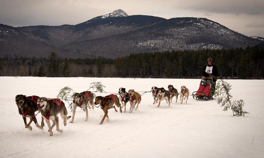 chocorua-dog-sled-races-march-02-2014-052.jpg