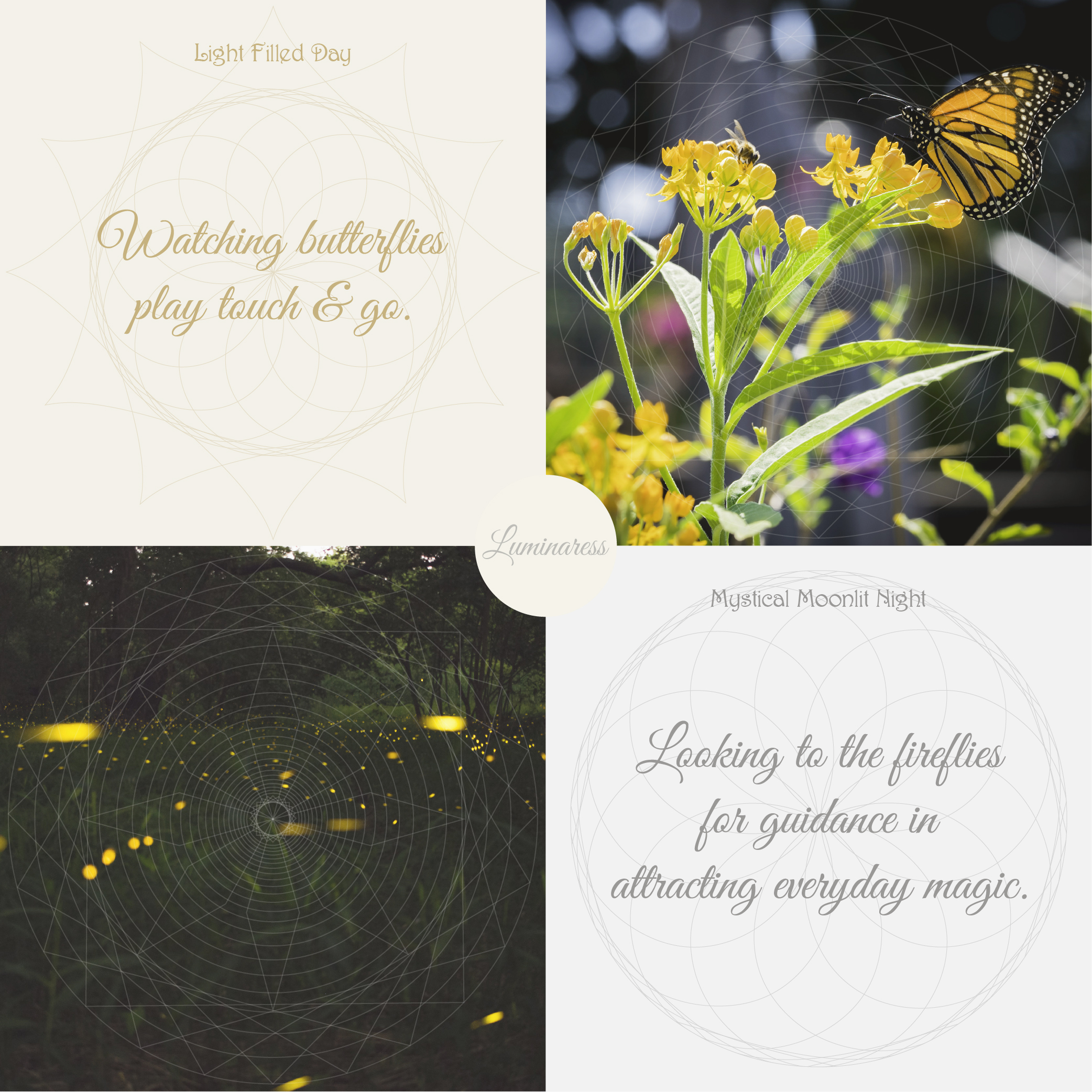 Light Filled Day:  Watching butterflies play touch & go.  Mystical Moonlit Night:  Looking to the fireflies for guidance in attracting everyday magic.