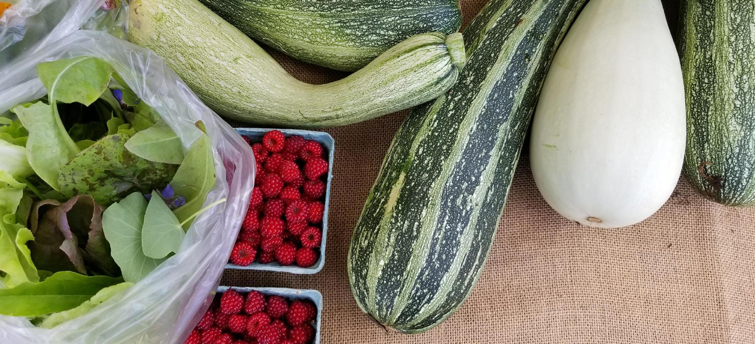 Celebrate the variety and abundance of agricultural products   grown on the Delmarva Peninsula