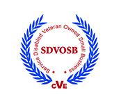SDVOSB Logosm.jpg