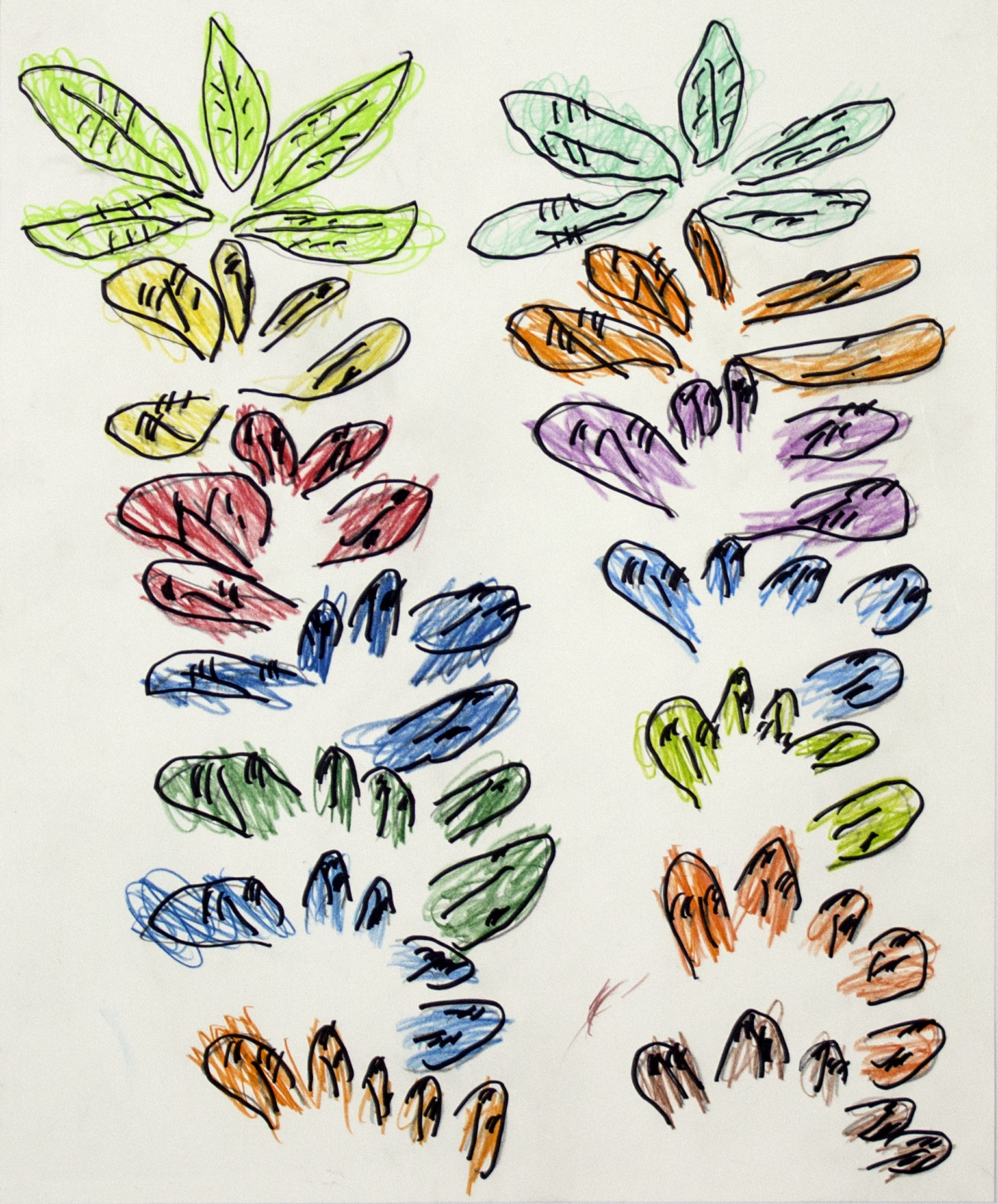 "Leaves . Colored pencil and permanent marker on bristol. 16"" x 20""."