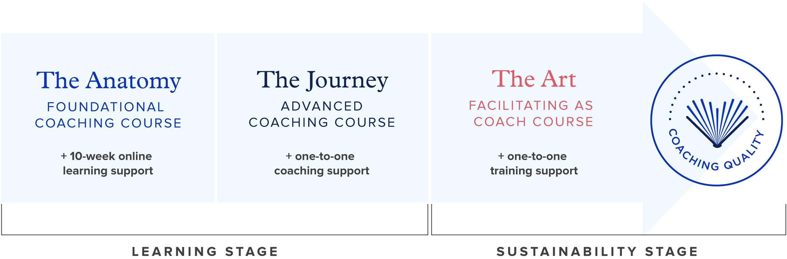 Graydin_Coaching_Courses_Schools_Educators_Teachers_Leaders_Administrators_Beginner_London_Toronto_NewYork_Picto-new-25.png