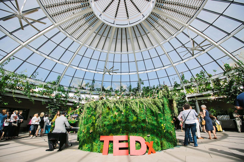 kelley_anderson_art_bontanica_TEDx.jpg