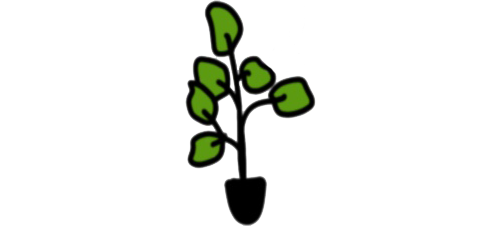 plant4.png