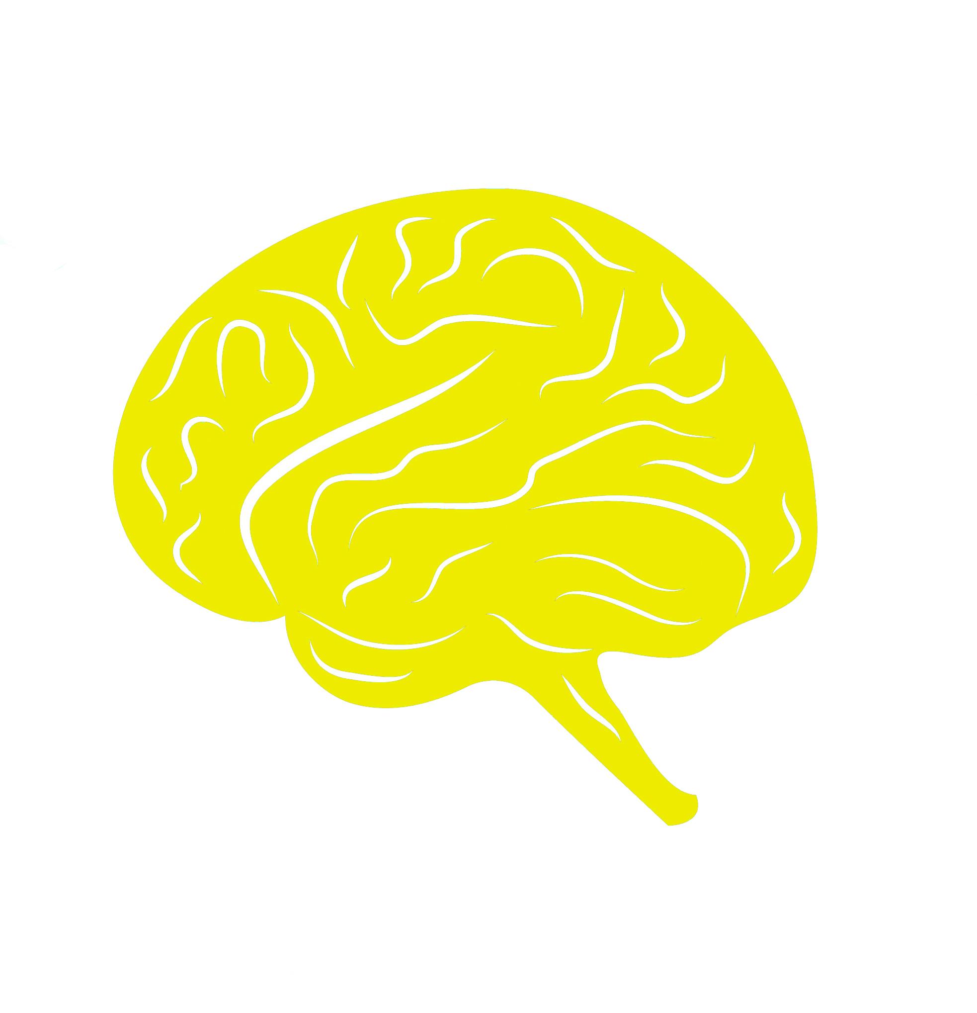 51921082_thumbnail brain y.jpg