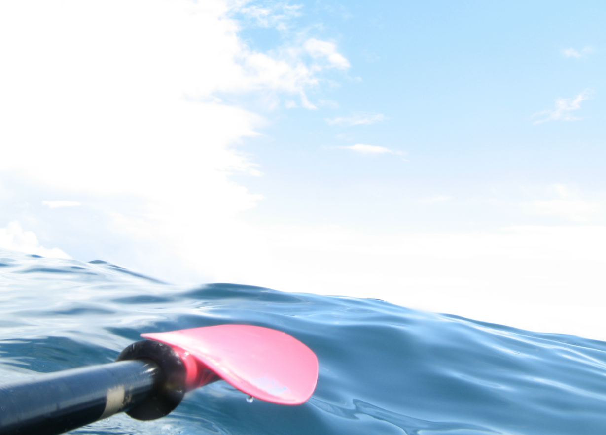 REPLACEMENT Paddle for Ch 16_.png