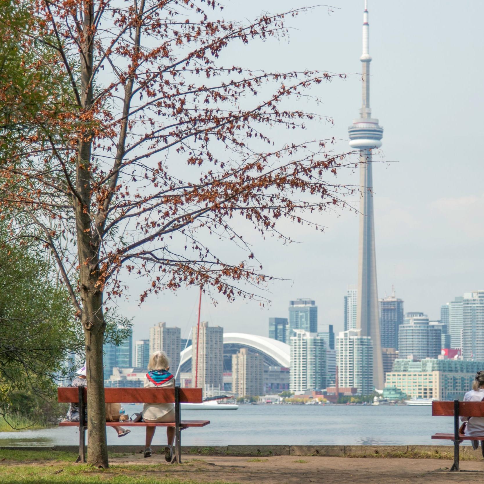 Allergy Friendly Restaurants in Toronto   From Kathleen, Allergy-Bites