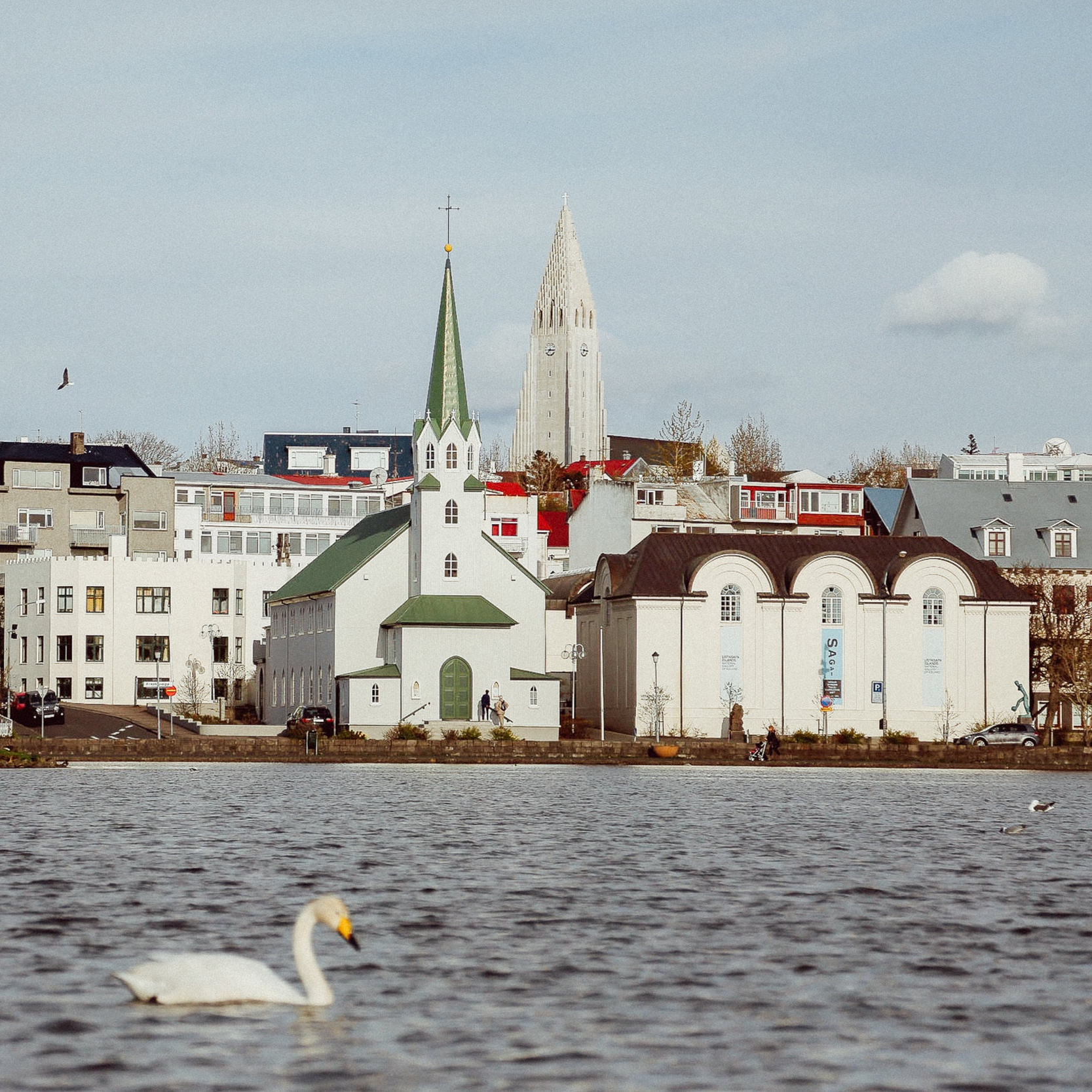 Gluten and Dairy Free in Reykjavik, Iceland   From Christina
