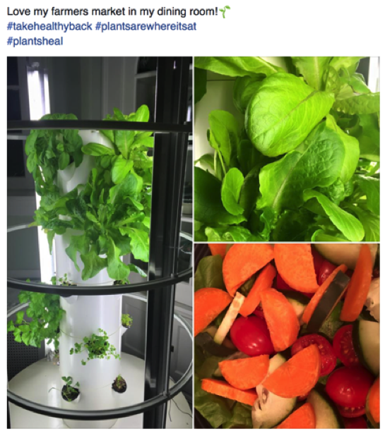 Tower Garden by Juice Plus+ Curiosity