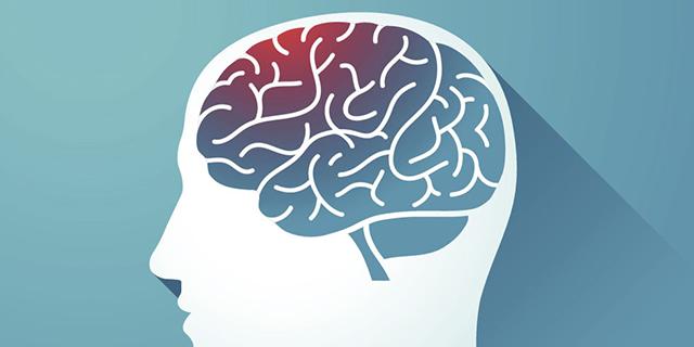 Brain Health -