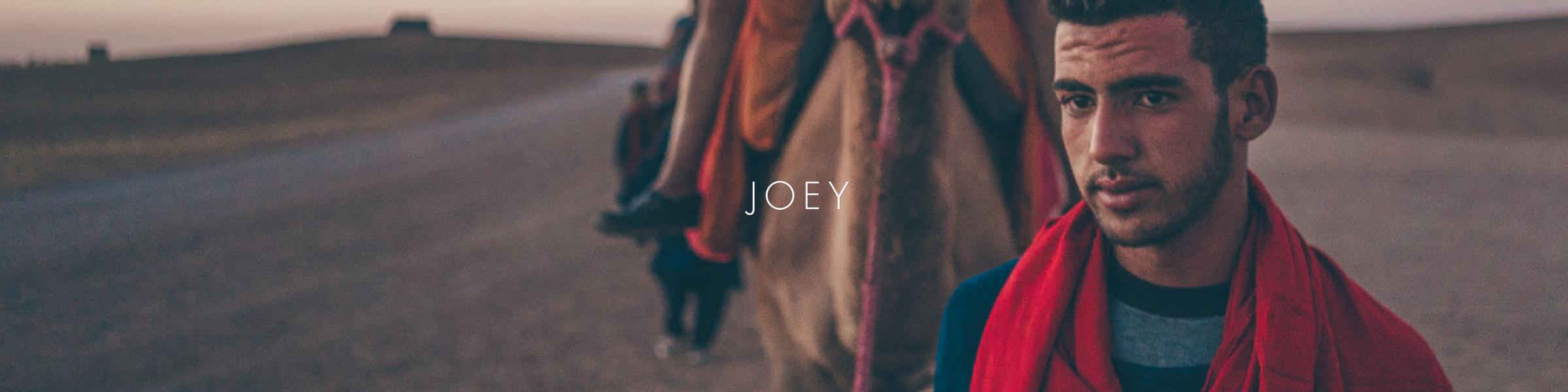 JOEY2.png