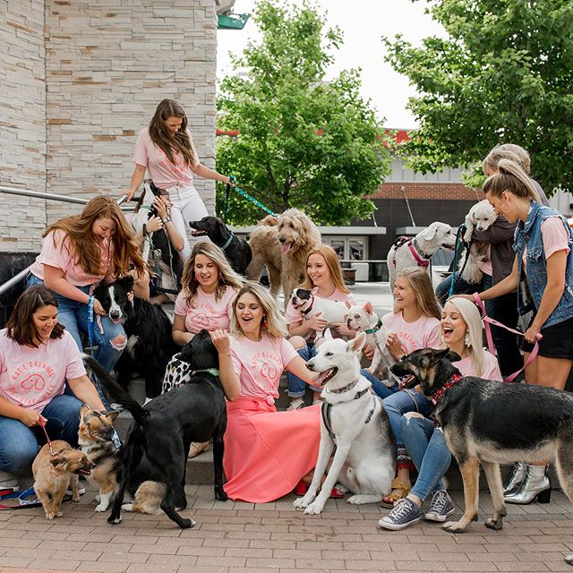 Squad goals? Well we're not complete without you! Join our team of pet professionals today! We're hiring pet sitters and dog walkers 🐶💕 Must have week day availability with a minimum of 3 days per week. To apply email your resume to sitstaywalk@katieskckennel.com