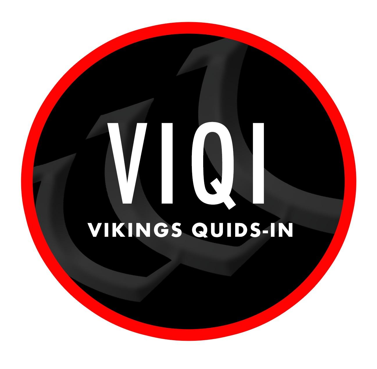 VIQI-4.jpg