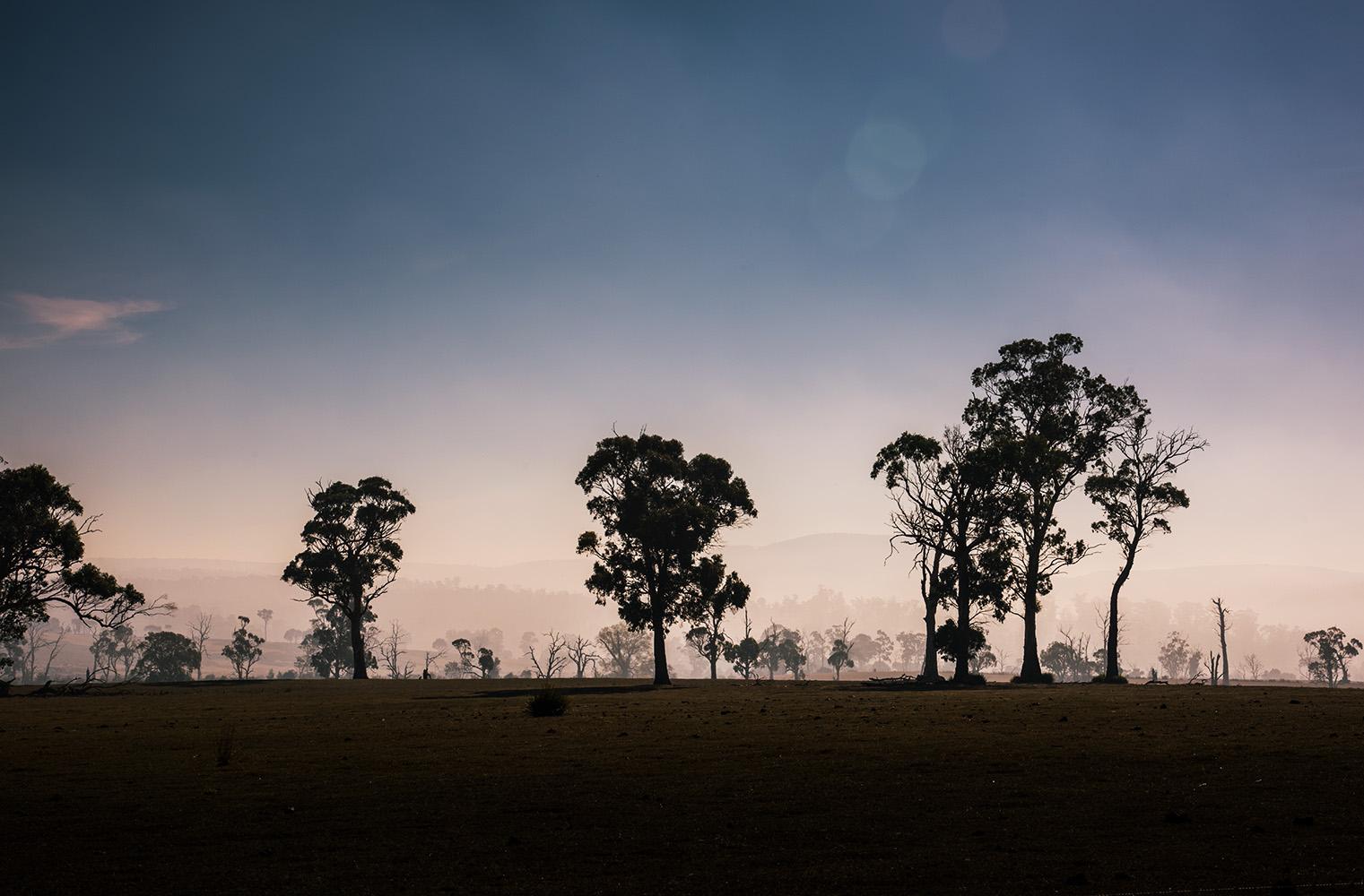 Bushfires, Tasmania