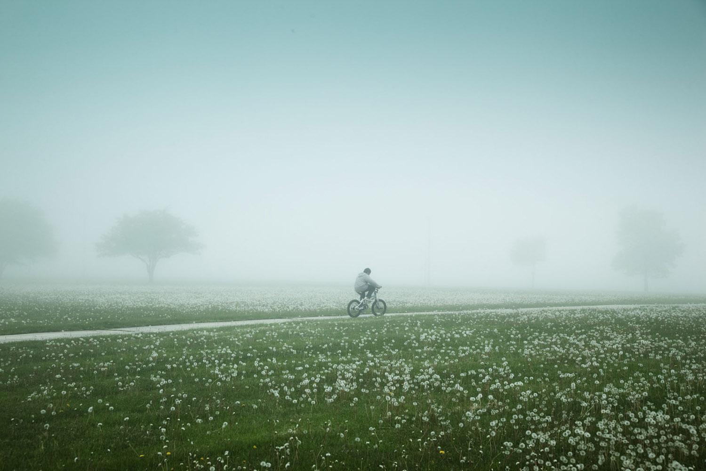 Milwaukee in the Fog