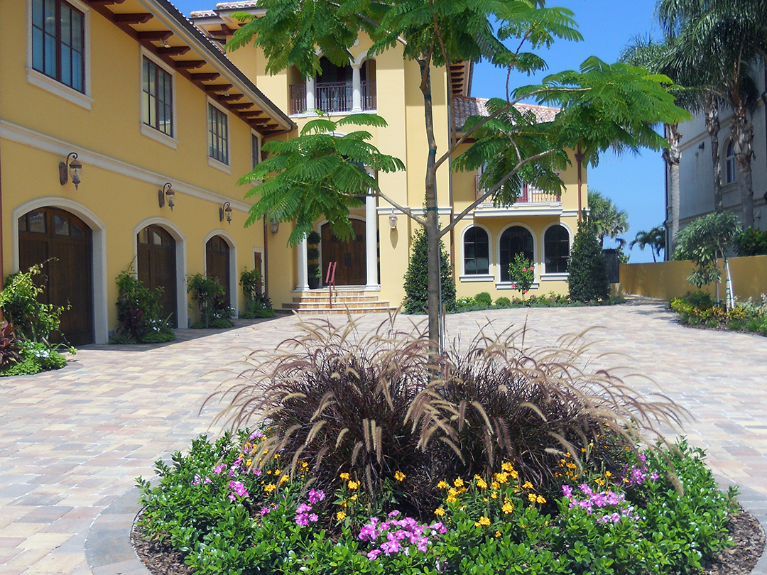 After - softscaping with attractive palms, flowers, and pots are added to balance the home's aesthetic