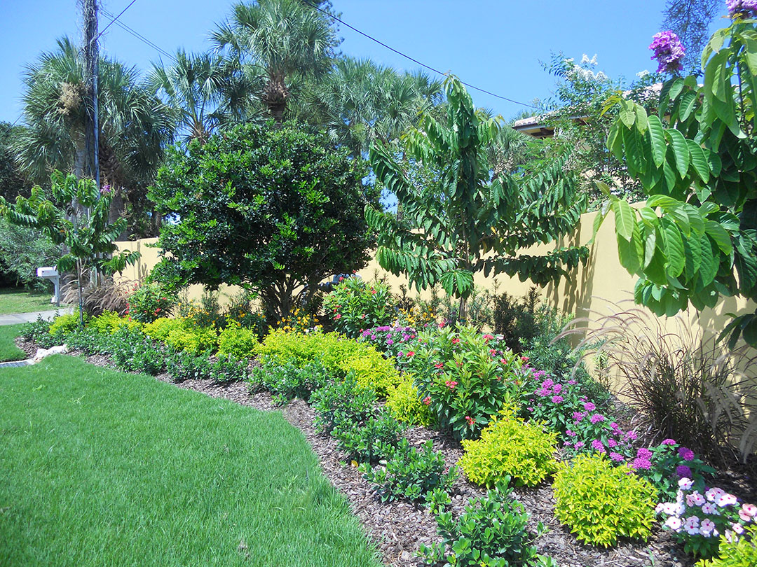 After - new trees, shrubs, and flowers along with new grass enlivens the property
