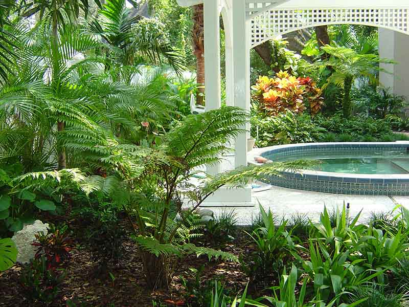 Beautiful landscape design to enhance pool privacy