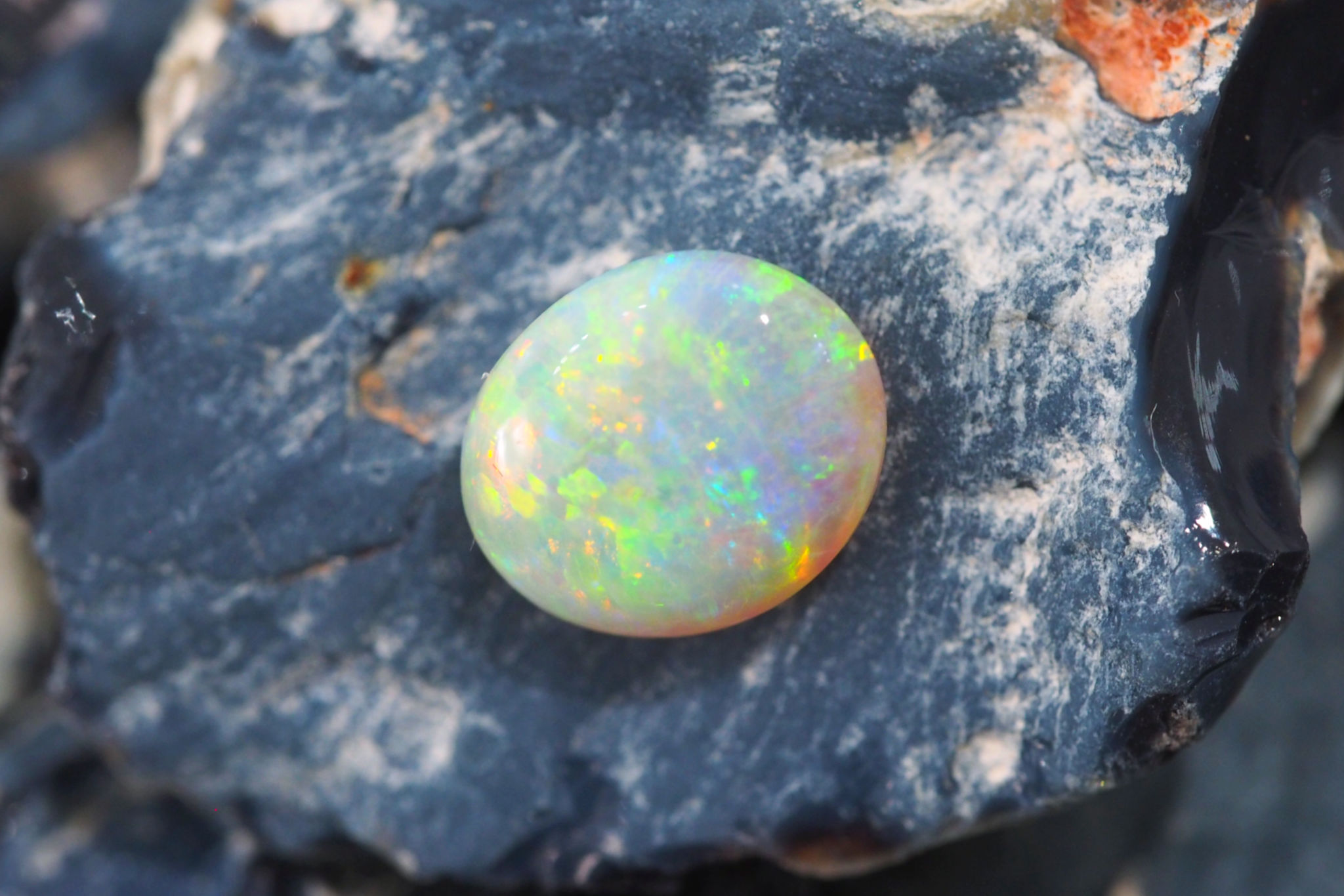 White or Light Opal - First mined at White Cliffs, NSW, today White or Light Opal mainly comes from Coober Pedy and Mintabie in South Australia. Stones range from transparent to nearly opaque, and feature a rainbow of brilliant colours set against a pale light or white body tone or background. This type of opal is also known as 'milky' opal, and is the most common type of opal found in Australia.