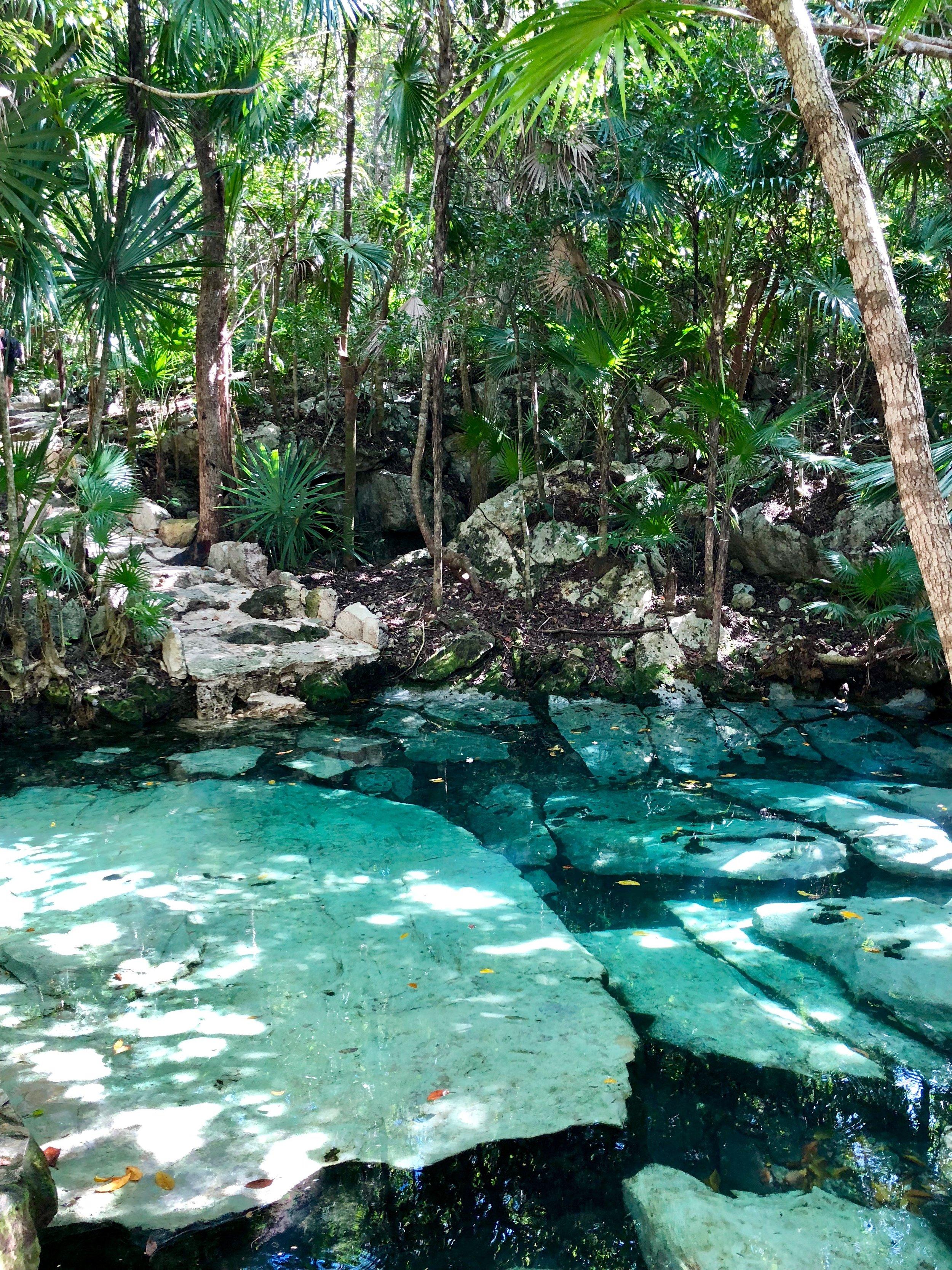 Cenote Azul located 30 minutes north of Tulum.