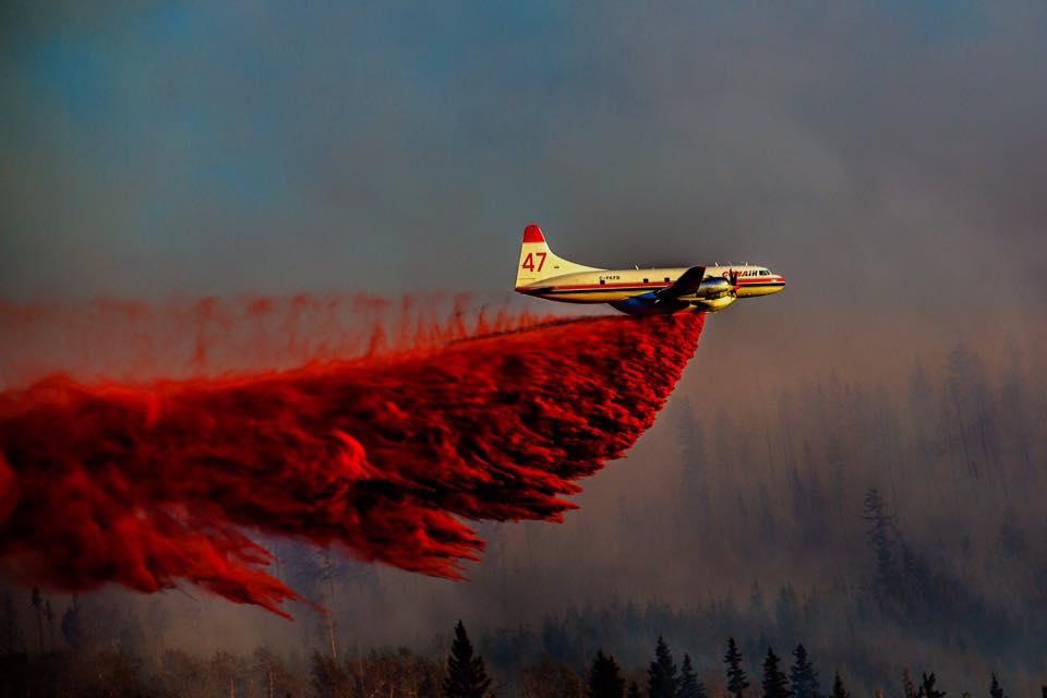 fire bombing .jpg
