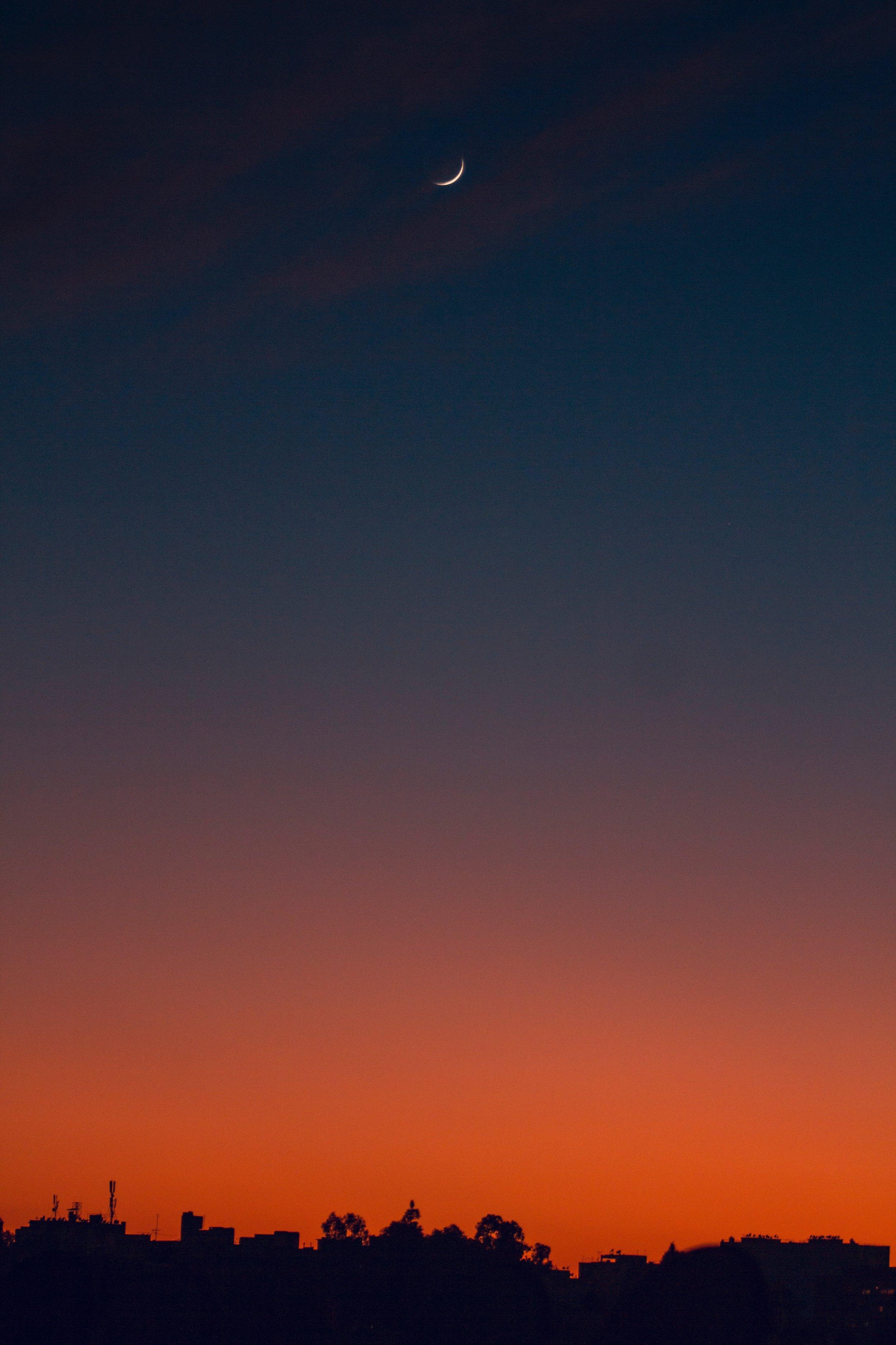 backlit-dark-dawn-1723637.jpg