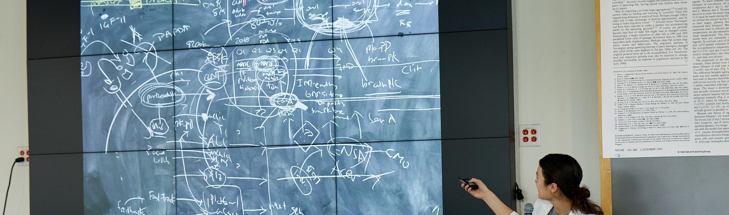 Curriculum Portal -
