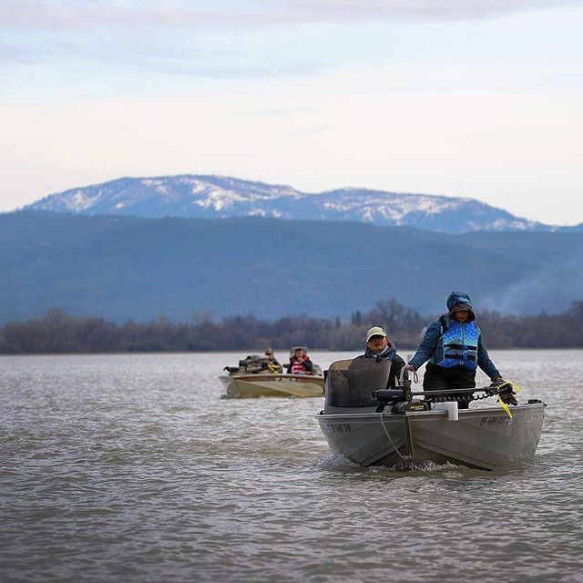 Teams return to HQ to weigh-in during the Clear Lake Crappie Association's February tournament Saturday. #clearlake #clearlakeca # fishing #crappie #outdoors #catchandrelease #nature #boating
