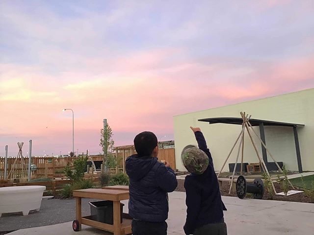 """Curiosity is the beginning of wisdom""- Francoise Sagan  Let ones inquisitive mind be nurtured, respected and encouraged ❤️ #Growactive #pinksky #nofilter #seeing #friendships"