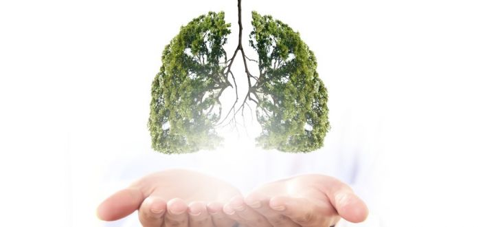 Clear mucus from lungs