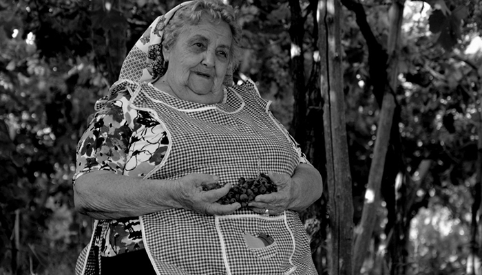 Nonna_holding_grapes_in_vineyard.jpg