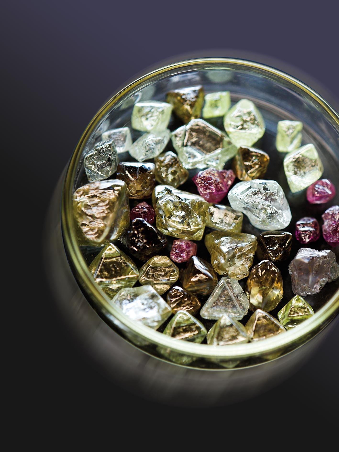 Photo courtesy of the Diamonds Producers Association.