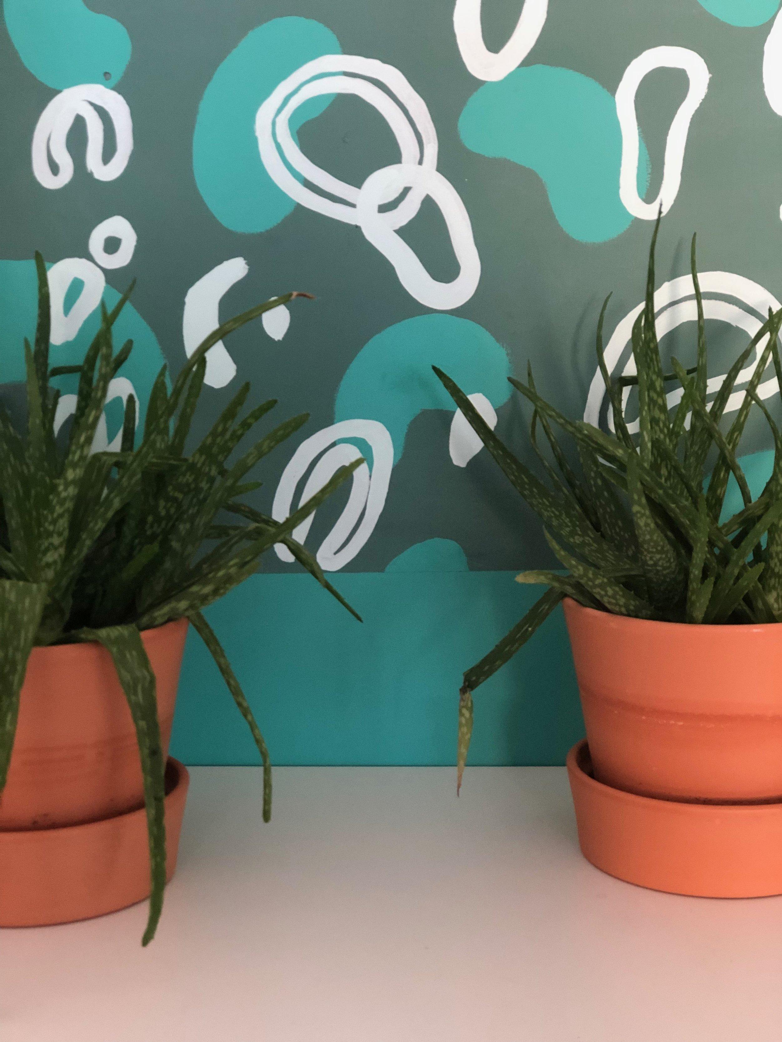 Green Room Plants.jpg