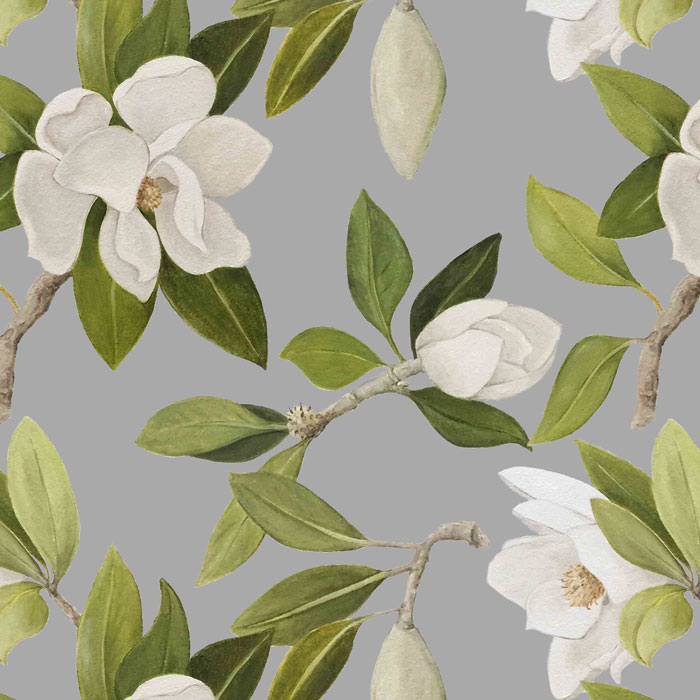 White-Magnolia_grey_crop.jpg